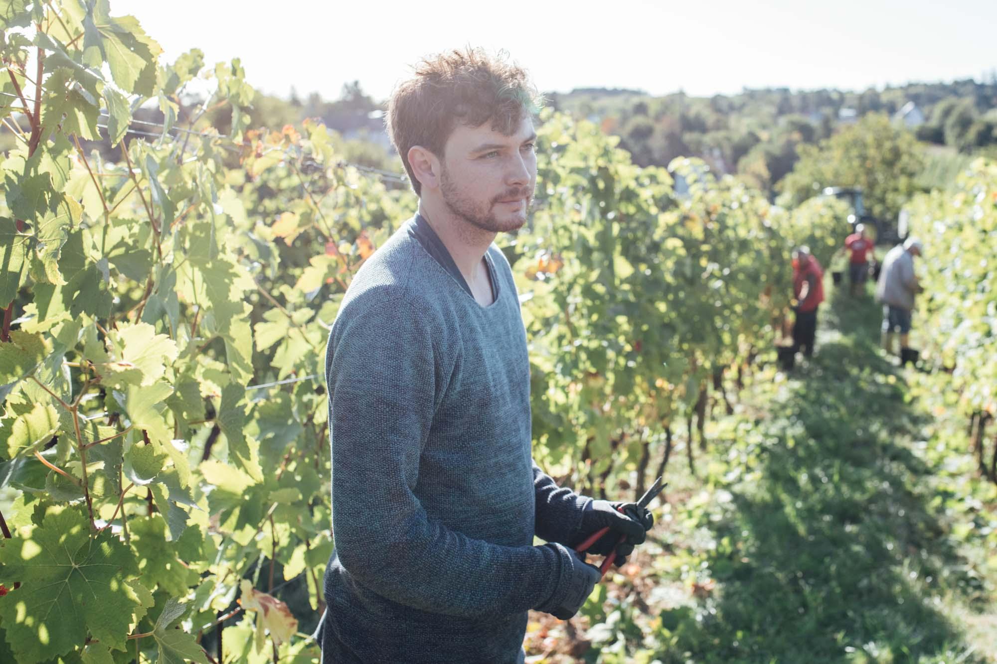 Christoph Schmid im Weingarten
